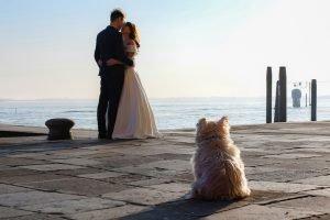 2ofus-weddings-venice-engagement-portrait-colekor-041